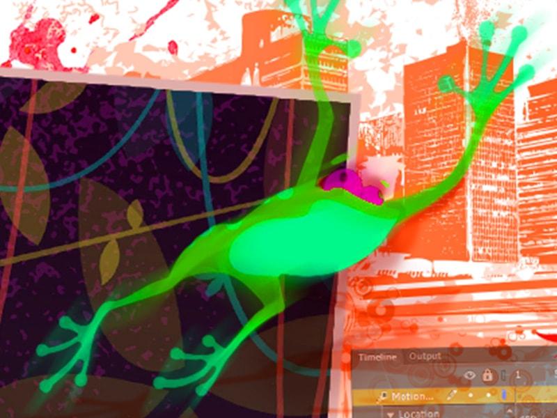 Corsi di web design: corsi di web design con Animate